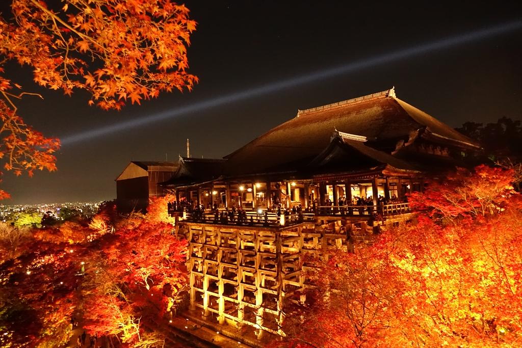京都 紅葉 ライトアップ おすすめ