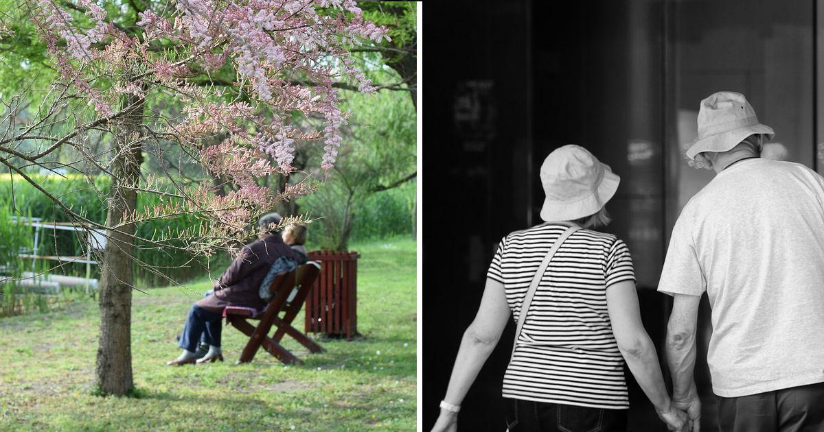 "elderly.jpg - ""バブル女子""アラ50で初婚…この10年で倍増した理由"