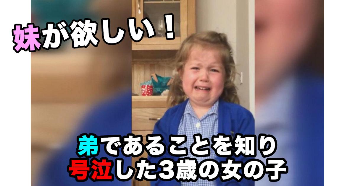 88 65.jpg - 妹が欲しい!弟であることを知り号泣した3歳の女の子