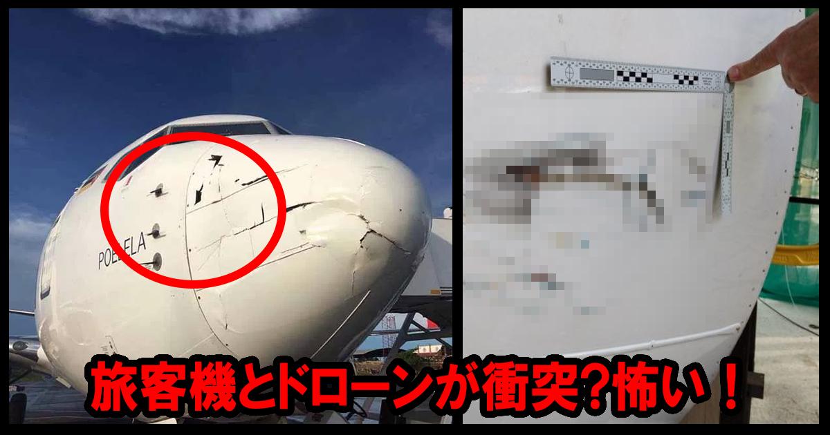 airplane ttl 1.jpg - 旅客機とドローンが衝突!幸い「軽い損傷」で無事着陸