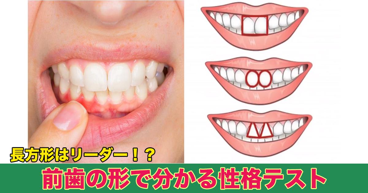 88 111.jpg - 長方形はリーダー!?前歯の形で分かる性格テスト