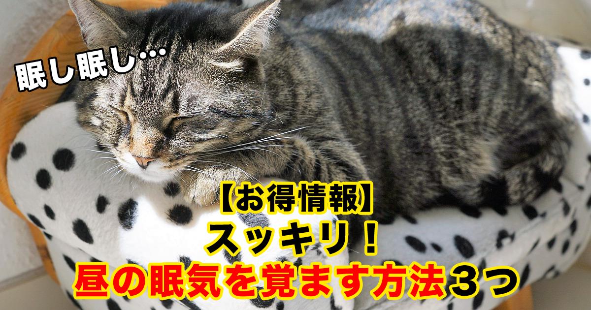 88 133.png - 【お得情報】スッキリ!昼の眠気を覚ます方法3つ