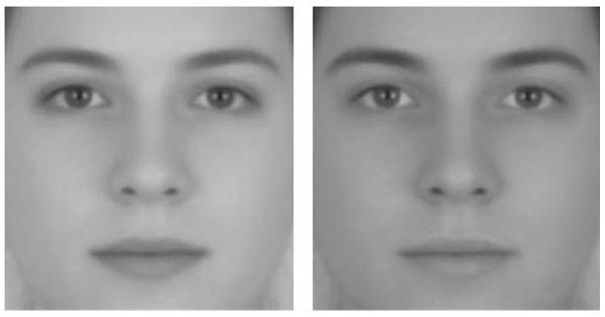 article thumbnail 1.jpg - 두 눈을 의심하게 만드는 '착시현상' 사진 모음(+17)