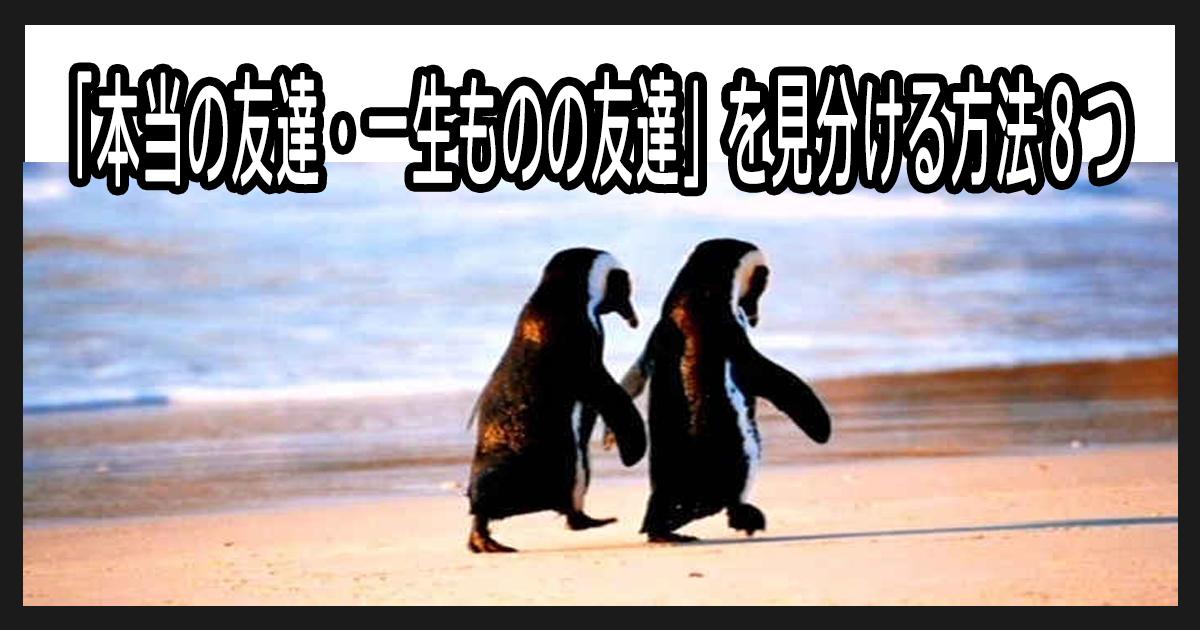 sinyukakunin th.png - 「本当の友達・一生ものの友達」を見分ける方法8つ