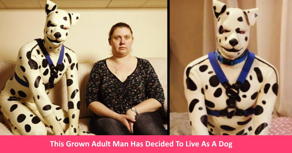 adultmandog.jpg - This Grown Adult Man Has Decided To Live As A Dog - Collar And All