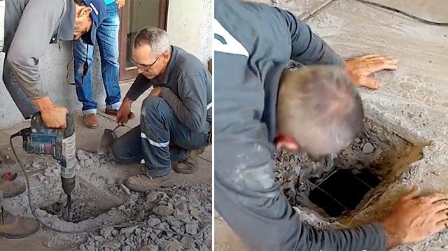 aa 2.jpg - 4 Kittens Rescued Under Concrete floor Miraculously