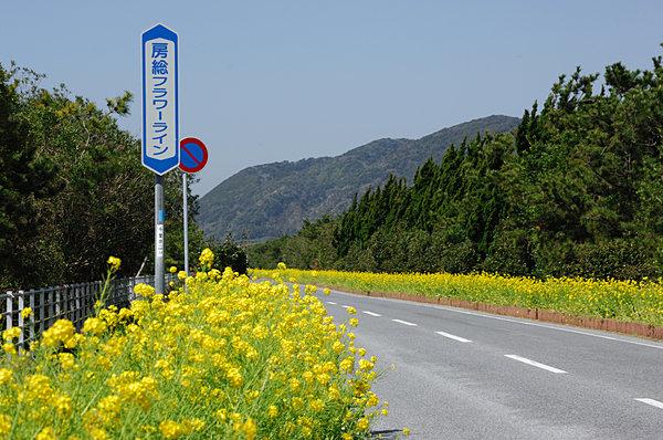 drive spot kanto area 2017030100133 1.jpg - 混雑知らず?関東の穴場ドライブスポット