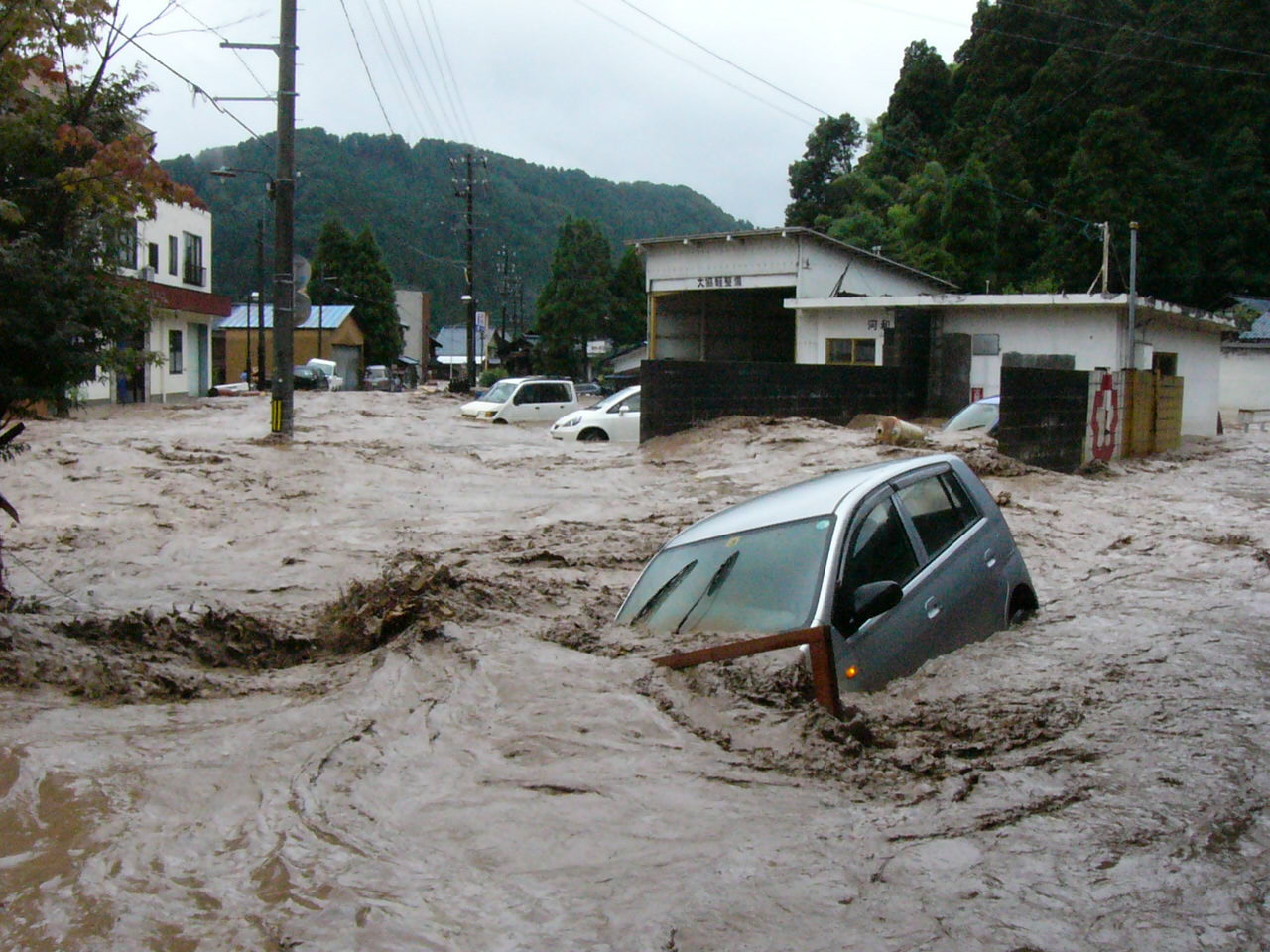 img 5a5060a7de9f1.png - 中国で大洪水!救出される豚さんの画像が可愛いとTwitterで話題