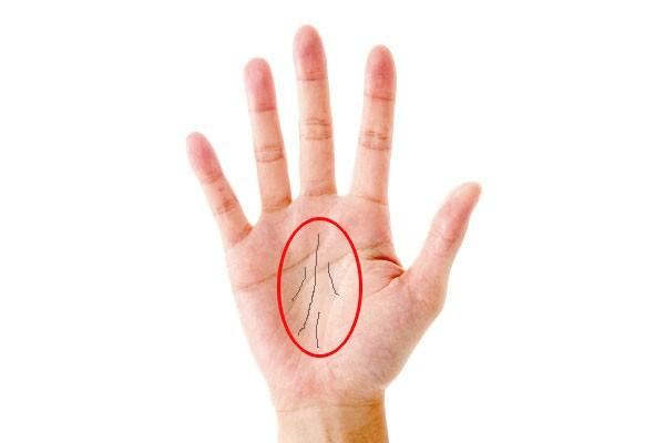 img 5a50bf0ec1c54.png - 知っていれば面白い!手相における運命線が表す意味