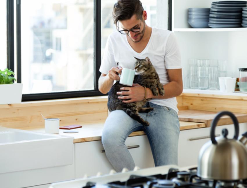 img 5a55bbe88a1ba.png - 猫好き男子の特徴は?性格や生活スタイルの傾向を紹介