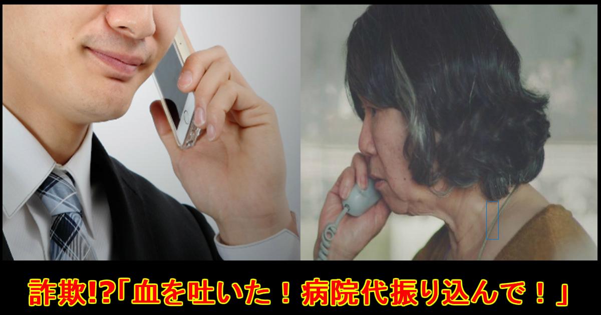 unnamed file 12.jpg - 次のオレオレ詐欺は『母ちゃん!俺トイレで血を吐いた!』