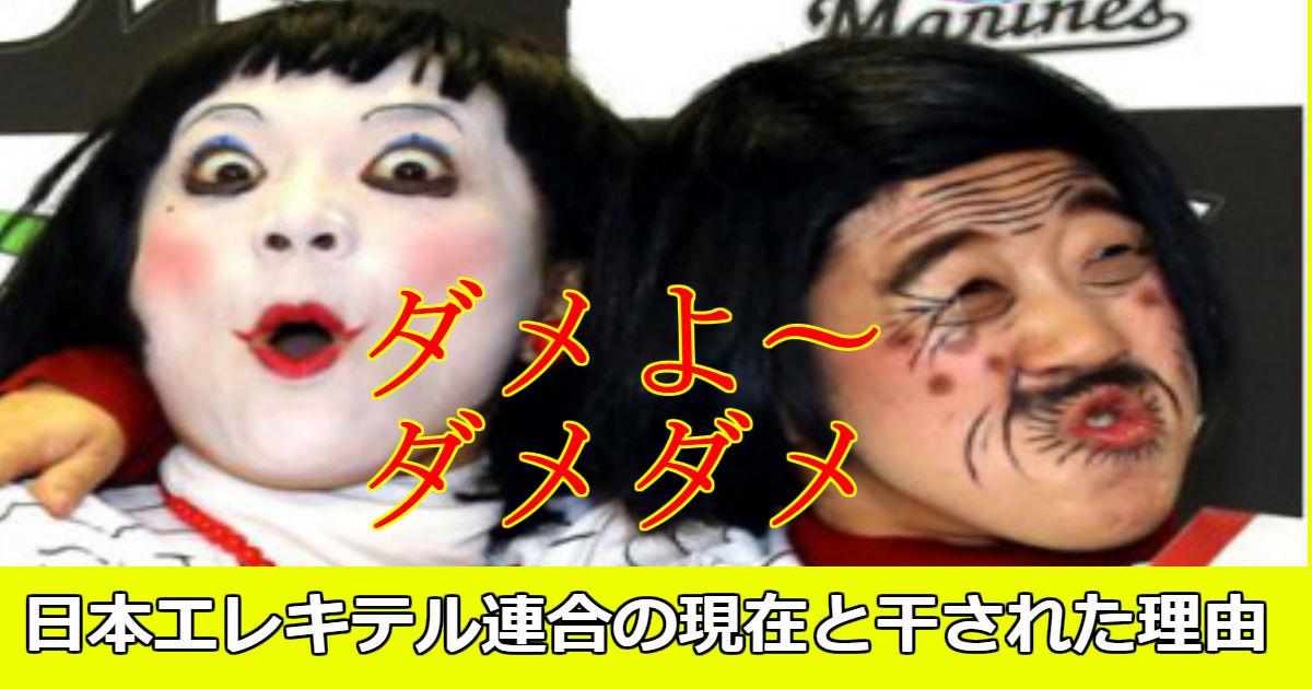 akemi.jpg - 日本エレキテル連合が干された理由と現在何をしているか気になる