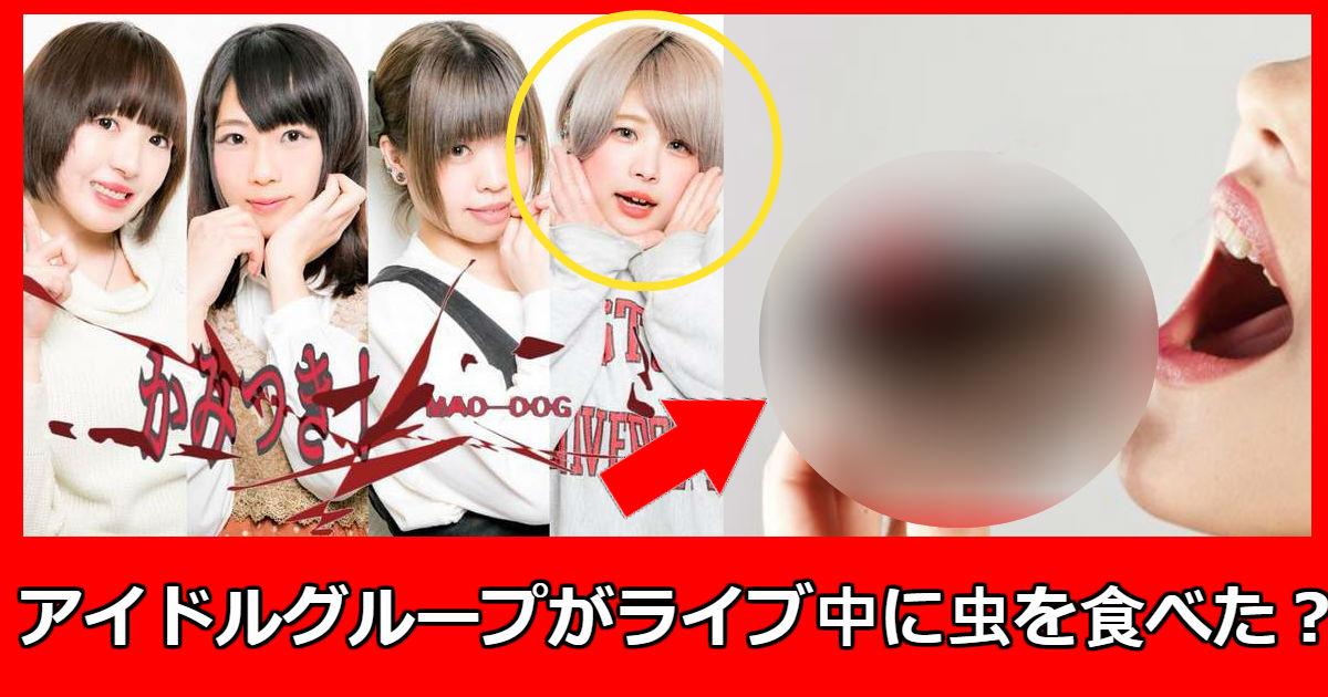 mad dog.jpg - 新人地下アイドルグループがデビューライブ中「カブトムシを食べて」解雇