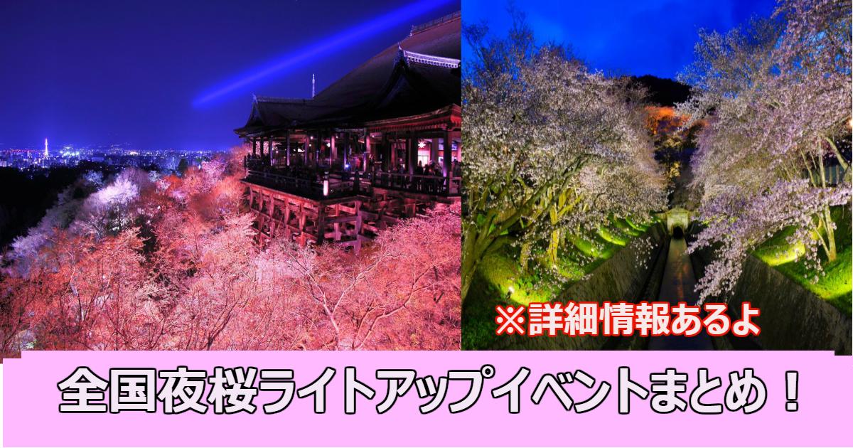 sakura2.png - 全国夜桜ライトアップイベントを楽しめるスポット10選まとめ