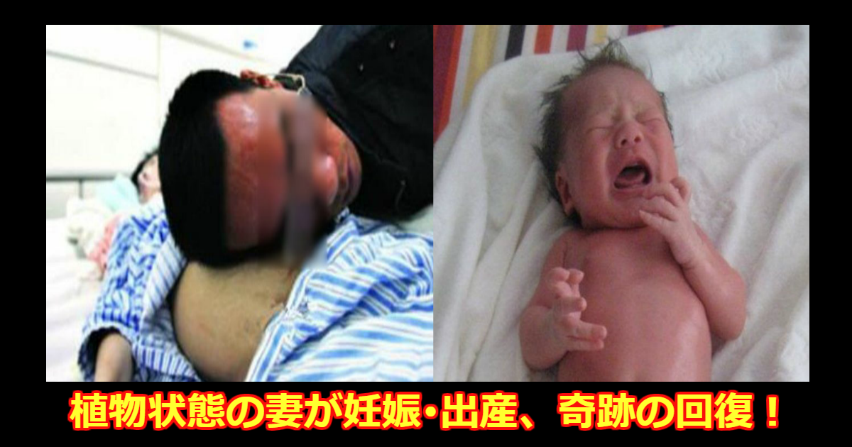 akachan.png - 植物状態に陥った妻が妊娠・出産した後に意識を取り戻した実話が泣ける