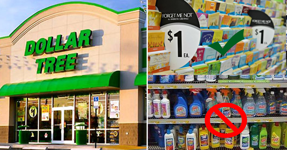 dollartree.jpg - The Best Things That You Can Get For Your Money At DollarTree
