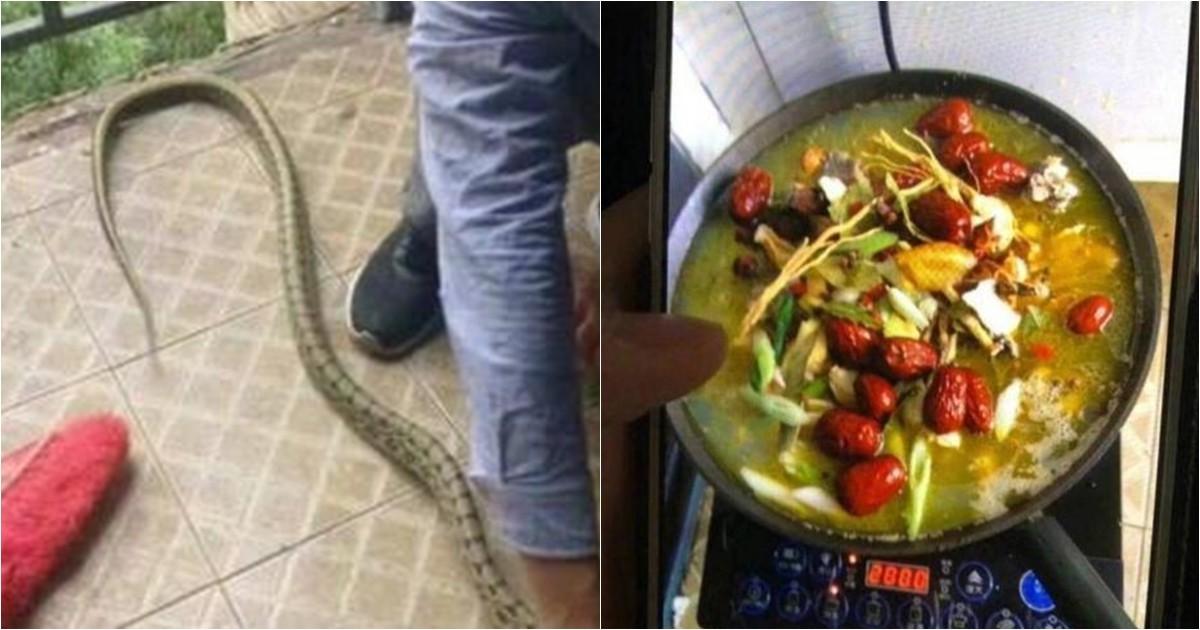 20180524122400 ee.jpg - 기숙사에 들어온 뱀 잡아서 보양탕 만들어 먹은 학생들