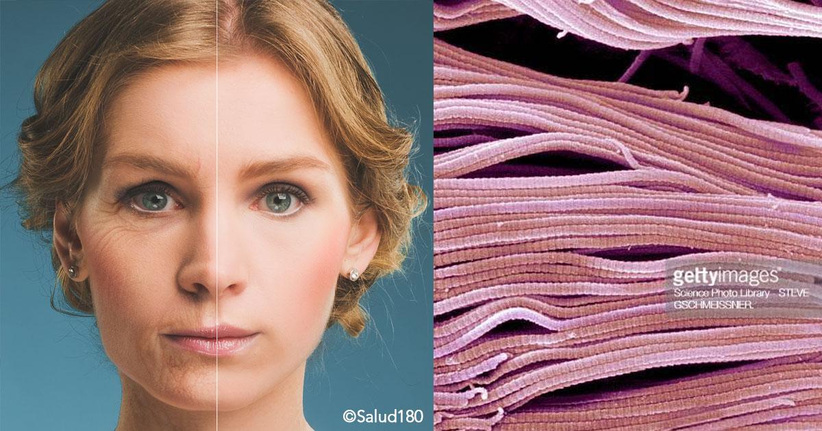 cover 30.jpg - Si quieres lucir más joven, estos son los 4 alimentos que producen colágeno en el cuerpo