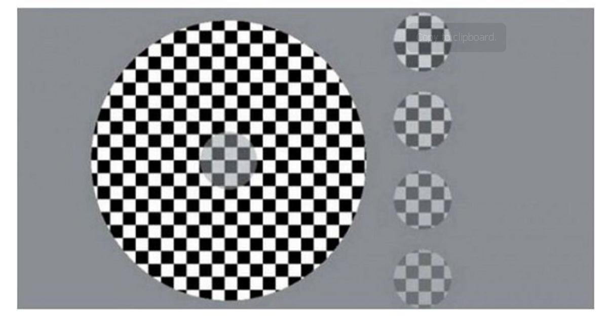 eyes.jpg - 【統合失調症テスト】この錯覚クイズ..正解すれば『統合失調症』の可能性大!