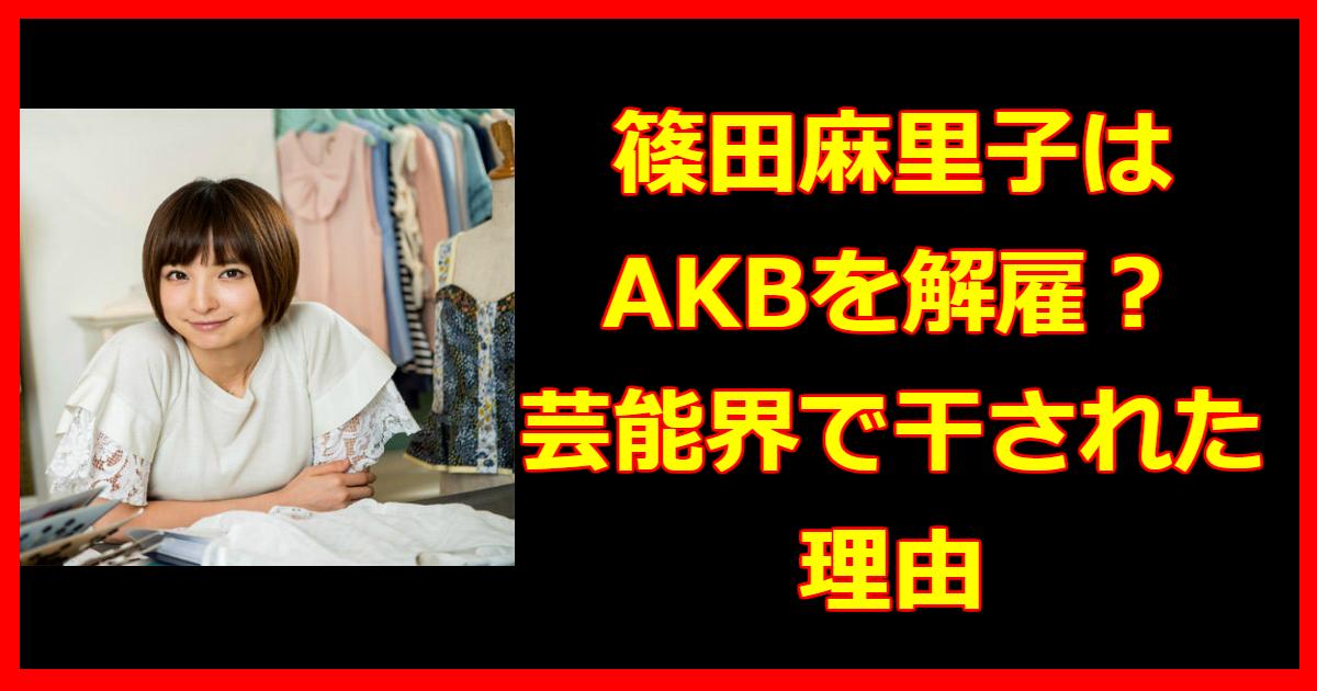shinoda.png - 篠田麻里子はAKBを解雇された⁈現在は?