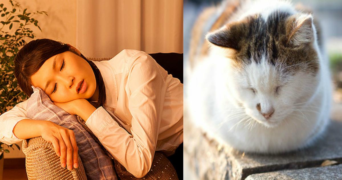 suimin.png - 時々寝てる間に「ビクッ」となるあの現象、あれって何でなの?