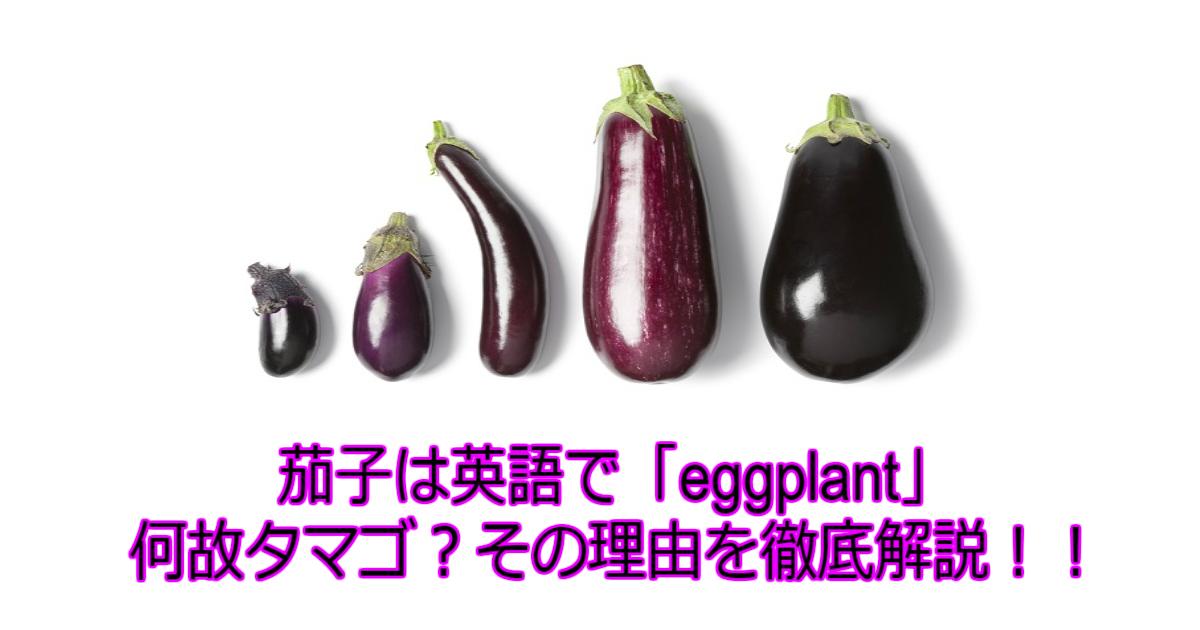 1 107.jpg - 【謎】【茄子の歴史】実はタマゴの植物だった?ナスが英語で「eggplant」な理由は?