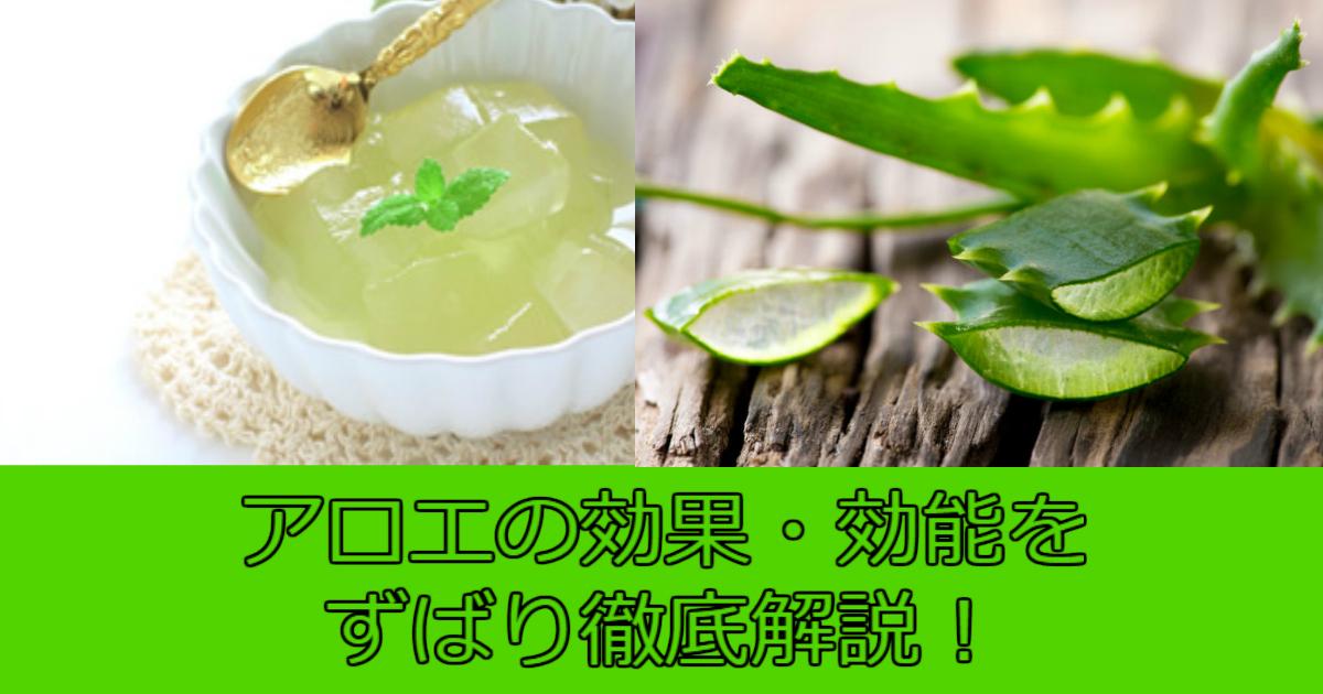4 88.jpg - アロエの効果・効能は?「塗る・飲む・食べる」で得られる効果を大公開!