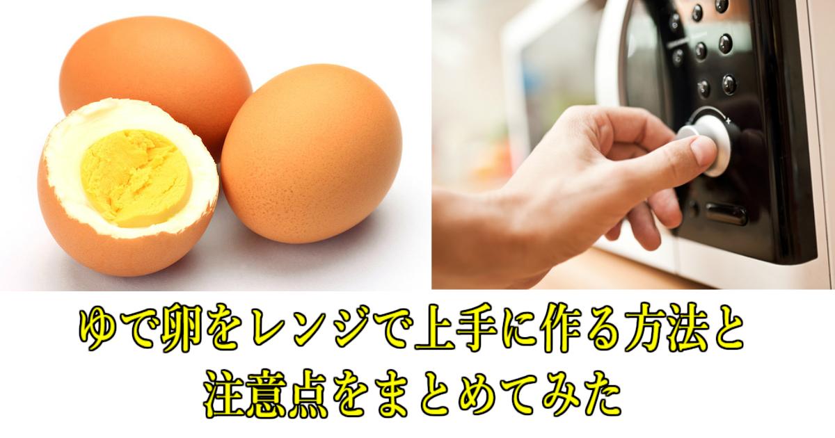 6 119.jpg - ゆで卵をレンジで上手に作る方法と注意点をまとめてみた