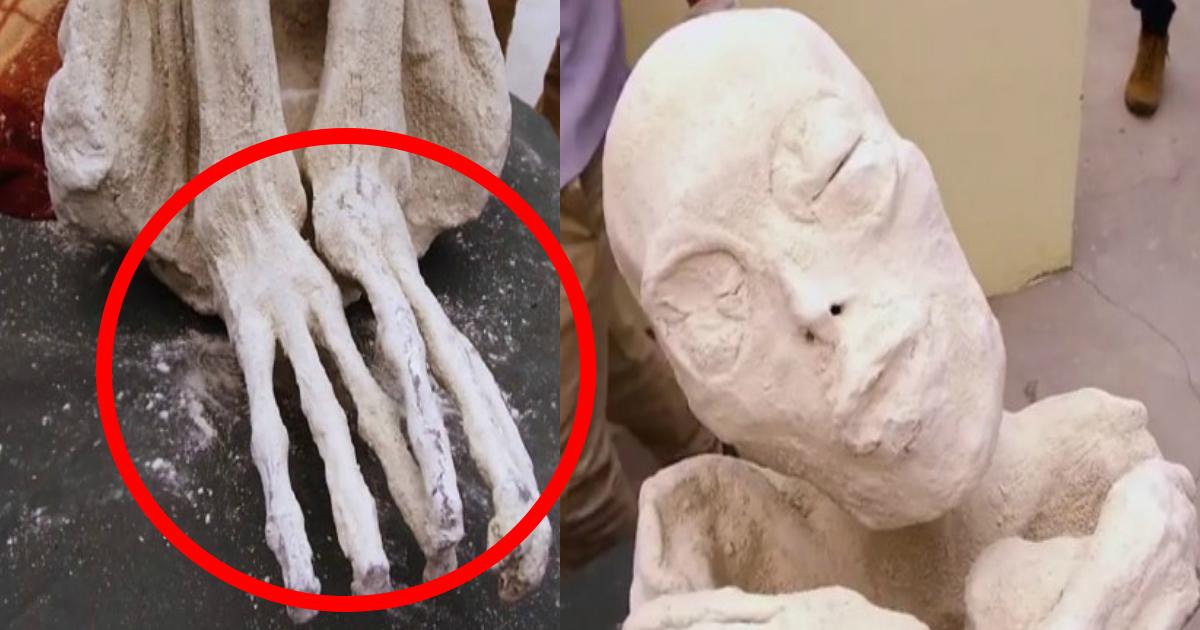 mummy ttl.jpg - 【新種人類!?】三本指の真っ白なミイラが発見される!