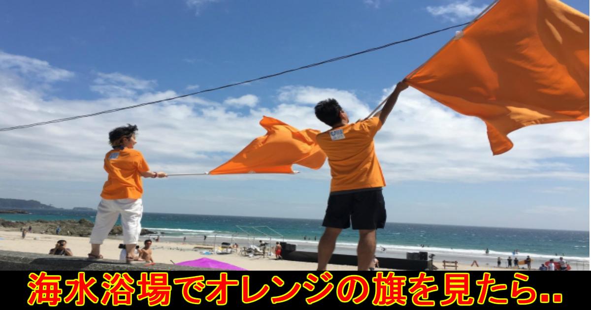 unnamed file 50.jpg - 海水浴場で『オレンジ色の旗』を見かけたら即避難を!
