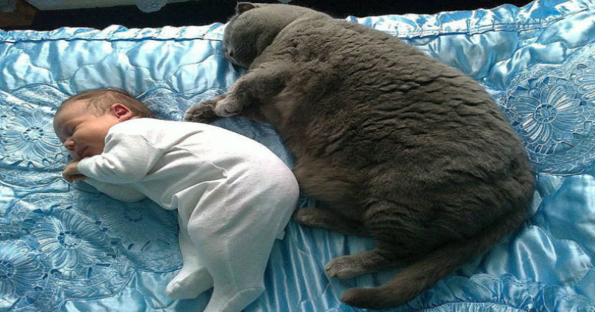 1 172.jpg - 27 photos showing that kids need pets — and vice versa