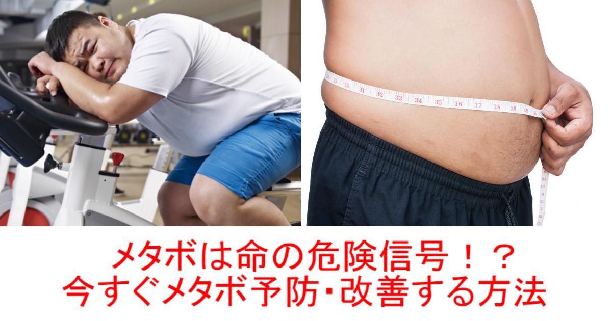 1 61.jpg - 【メタボは命の危険信号!?】生活習慣を変えるだけで改善できる