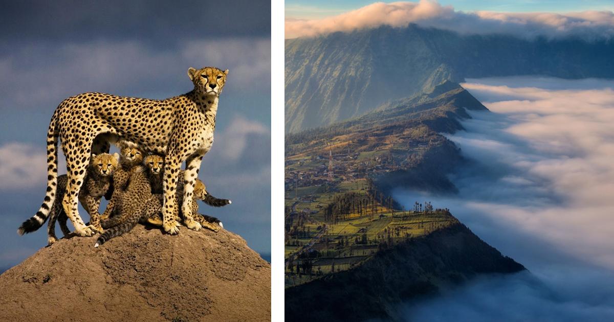 11 102.jpg - 25 Fotos impresionantes que muestran lo inusual que puede ser nuestro mundo