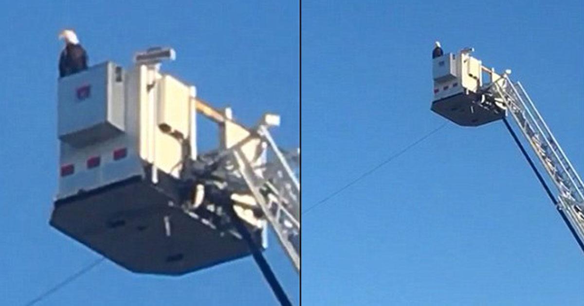 911 tribute.jpg - Águia pousou em caminhão de bombeiros se juntando a tributo ao 11 de setembro em Minnesota