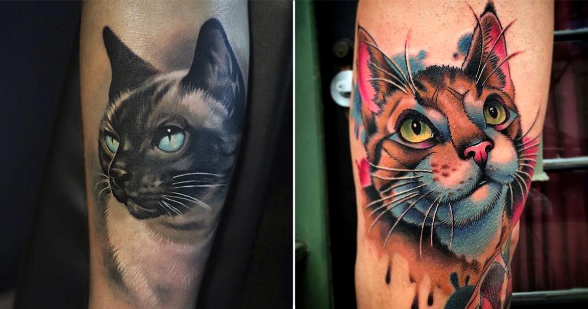 port.jpg - 20+ Preciosos tatuajes de gatos ideales para los amantes de los felinos