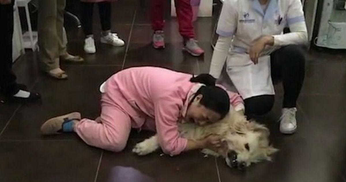 1 264.jpg - 近所の人に「毒された」犬を抱きながら号泣する女性