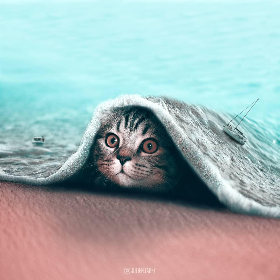 32147294 2224986981120178 3310484547497361408 n 1.jpg - 美到你捨不得眨眼!出自21歲藝術家之手的「超現實動物藝術照」驚艷大票網友