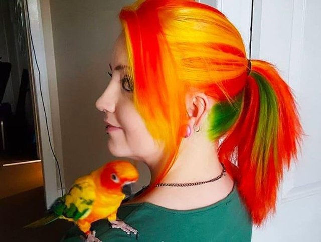 Colorful bird sitting on shoulder of woman with similarly colored hair.