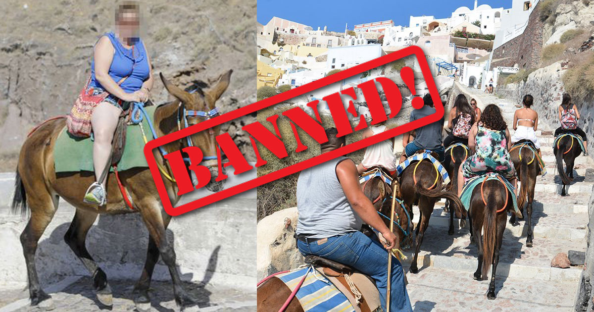 donkey ride ban.jpg - Greece Bans Overweight Passengers From Riding The Donkeys After Releasing A Set Of Images Illustrating Injuries