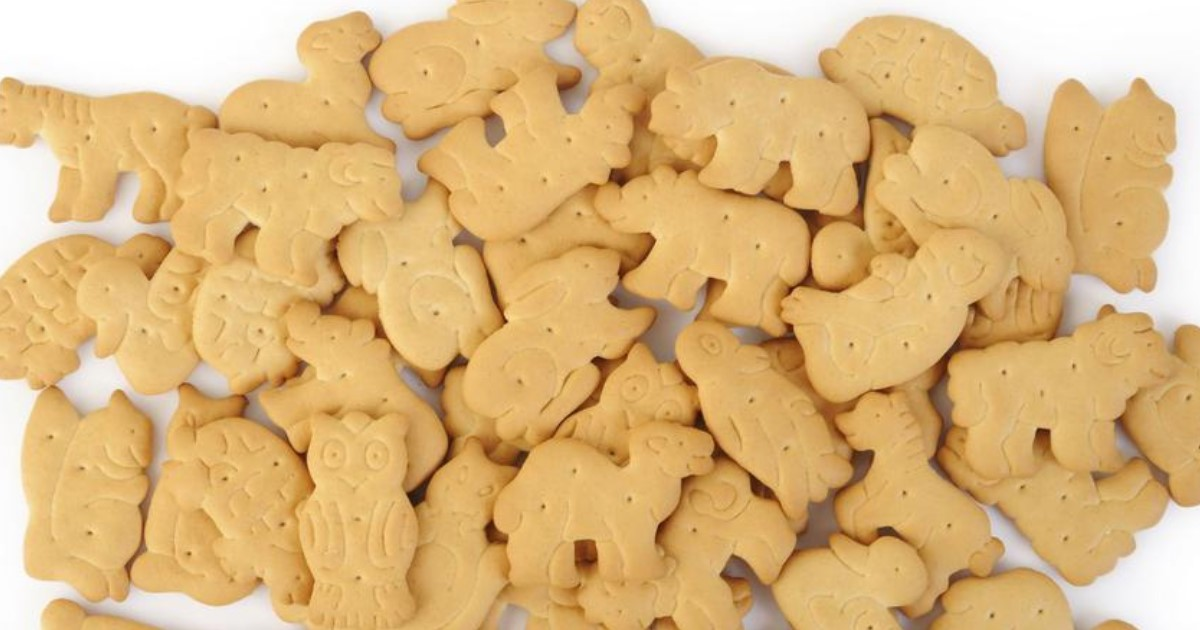 featured image 12.jpg - Vegans Want Animal Crackers Banned Because 'Animal-Shaped Food Makes Humans Feel Superior'