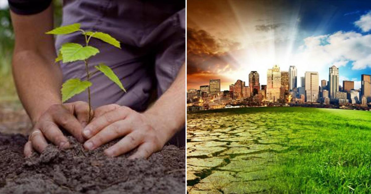 plas.png - En el año 2030 podría colapsar el mundo, estas son las 10 medidas con las que podríamos contribuir a salvar el planeta