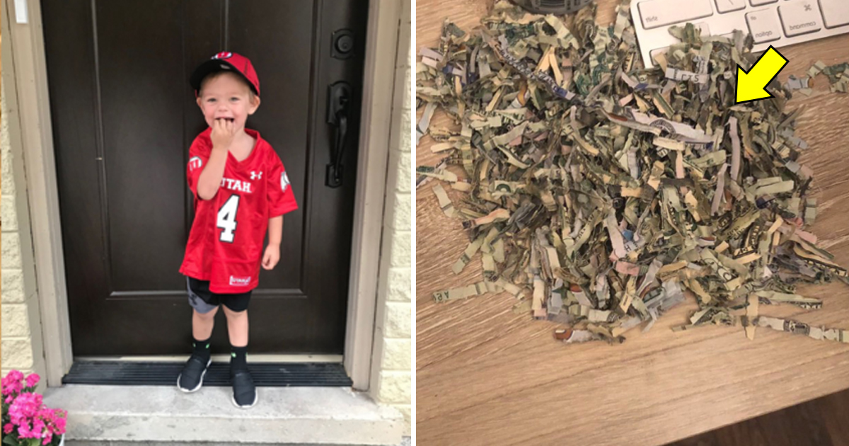 vdd.jpg - 2-Year-Old Kid Shredded $1000 Of Cash That Parents Spent A Year Saving