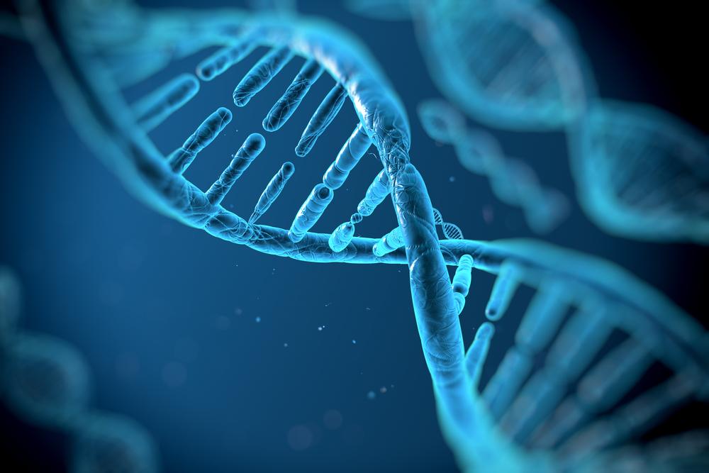 """depositphotos 35658689 m 2015.jpg - Une famille s'est """" effondrée """" après qu'un test ADN ait révélé la vérité sur leur patrimoine génétique."""