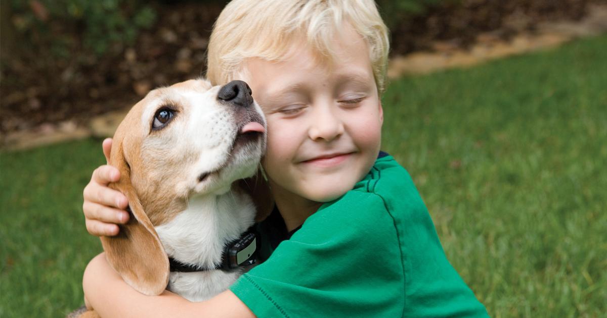 capa1 16.jpg - Seleção de imagens mostra por que toda criança precisa de um cachorro