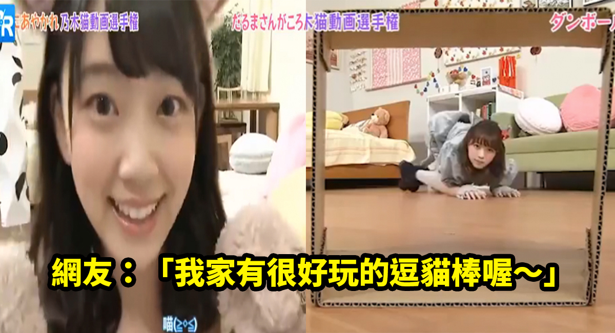 e4babae8a39de8b293.jpg - 日本節目找來一群美少女扮成貓咪,屁股翹高高鑽進去讓人大喊凍末條啊~