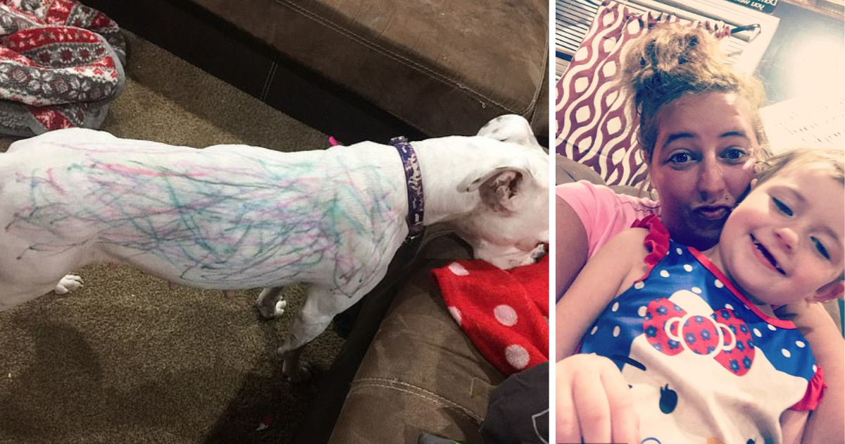 s3 6.png - Little Girl Covered Their White Boxer In All The Colors She Had