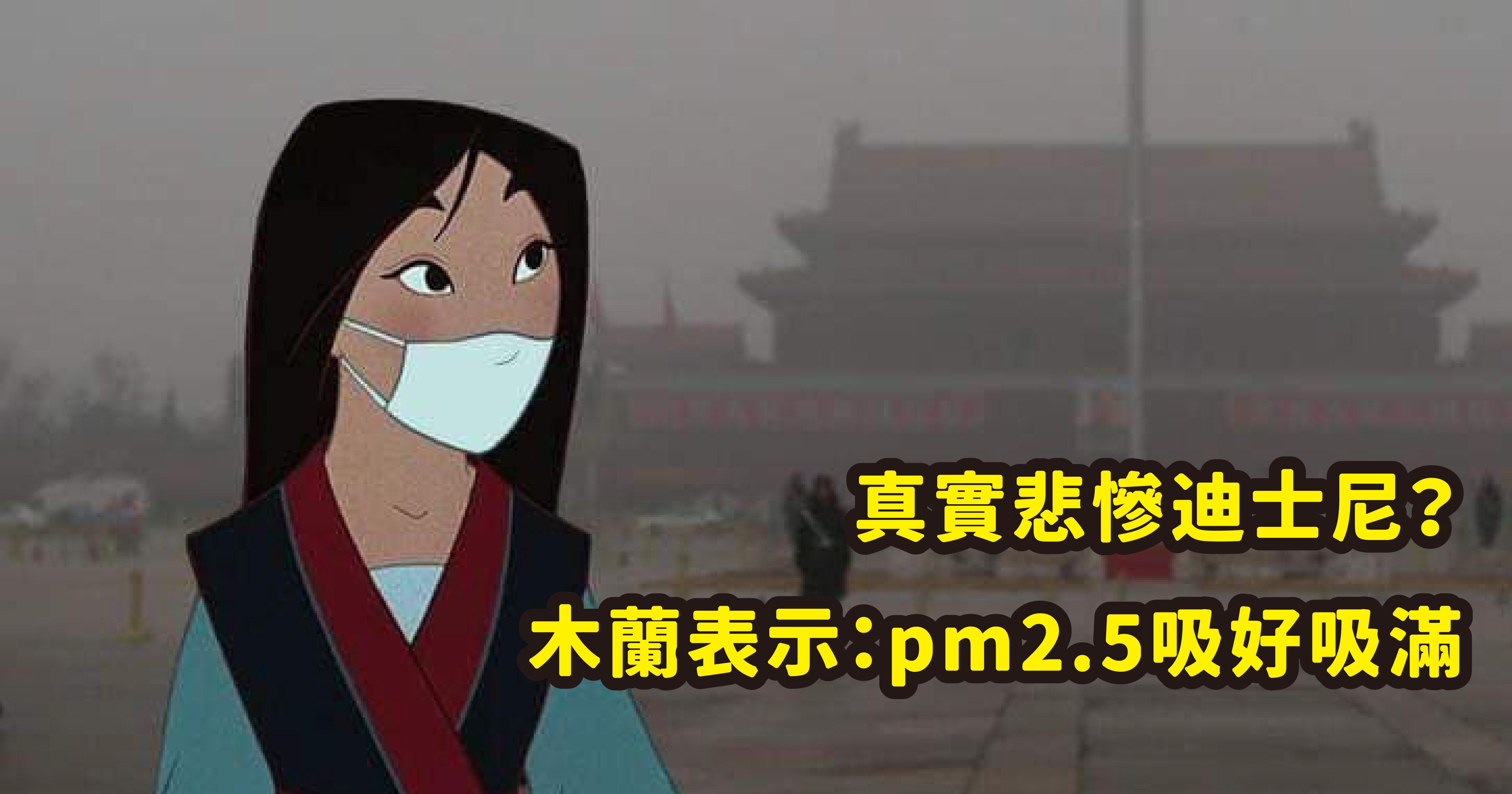 vonvone5b081e99da2 01.png - 真實世界悲慘版迪士尼!木蘭吸霧霾、艾莉兒被污染,童話故事果然都是騙人的?