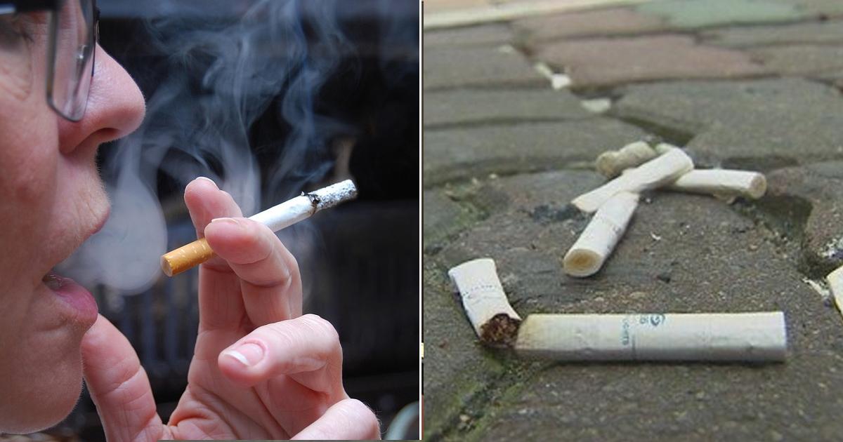 """8 12.jpg - """"꽁초는 담배회사가 수거해야""""... 흡연자 87%가 찬성했다"""