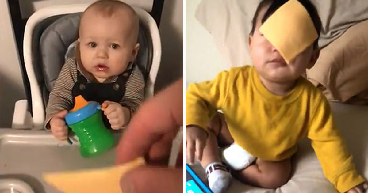 cheesed challenge.jpg - Parents Take Part In Internet Challenge Where They Throw Cheese At Their Children's Faces