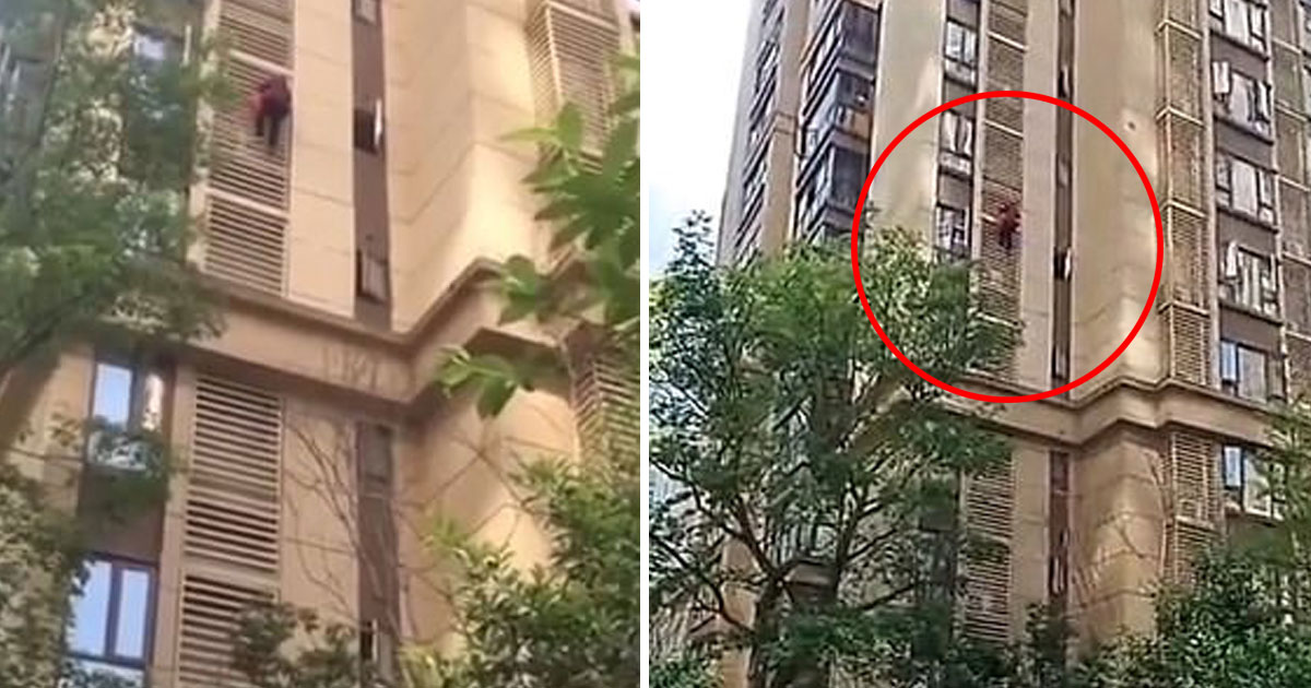 grandma climb down 14 storey.jpg - Grandmother Tried To Escape From Her 14th-Floor Flat By Climbing Down The Apartment Building With Bare Hands